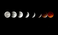 8 Phases of the 4.15.14 Blood Moon Eclipse